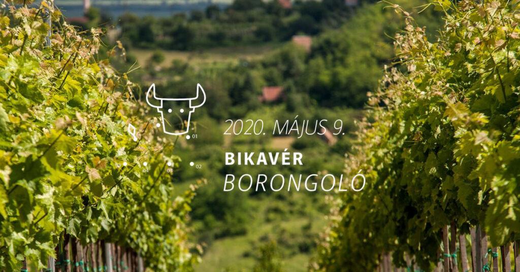Bikavér Borongoló 2020